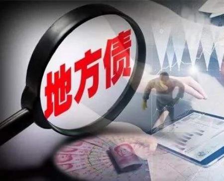 2019地方政府债券市场报告(6月)